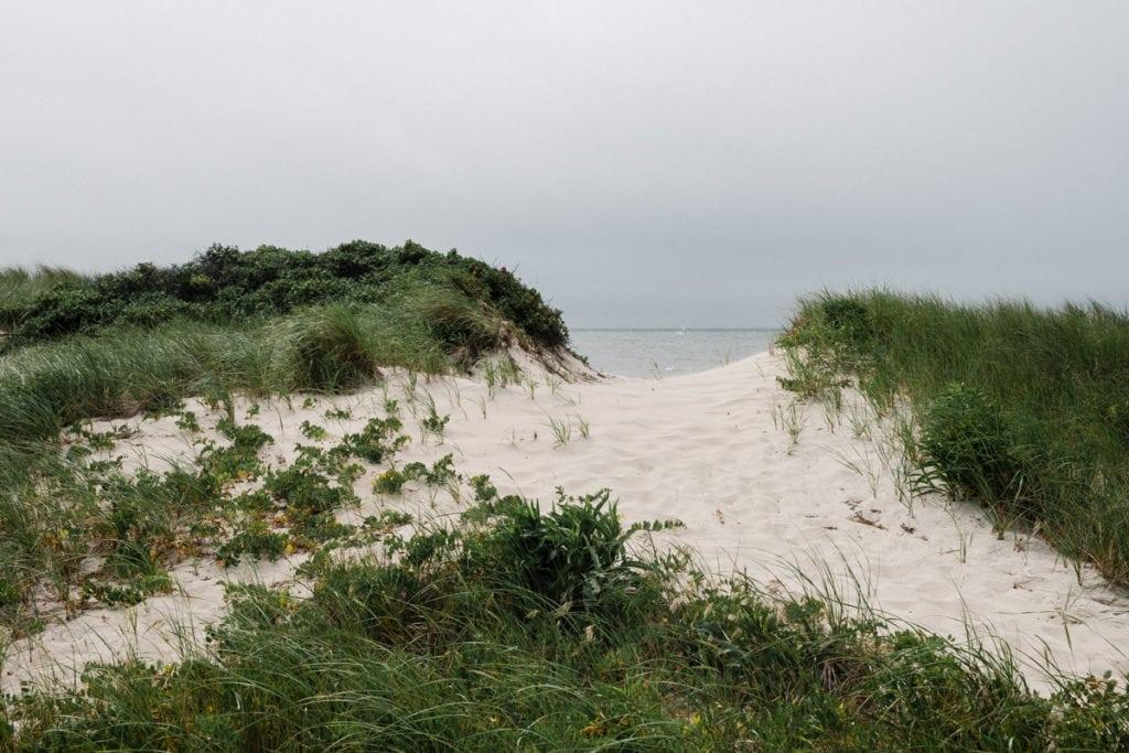 Lower Cape